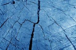 Stary brudny drzewa cięcie w w górę marynarki wojennej błękita brzmienia zdjęcie stock