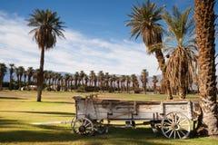 Stary Buckboard Zakrywająca furgonu drzewka palmowego oazy śmierci dolina zdjęcie royalty free