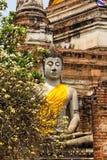 Stary Buddha, Ayutthaya Obraz Royalty Free
