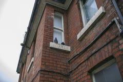 Stary budynek w Anglia mieście Obraz Stock