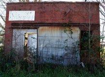Stary budynek z muśnięciem i winogradami Zdjęcia Royalty Free