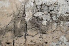 Stary cement textured ściana fotografia royalty free