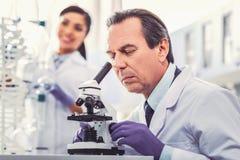 Stary chemik jest ubranym rękawiczki pracuje w laboratorium zdjęcia royalty free