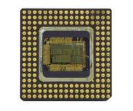 stary chip komputerowy white obraz royalty free