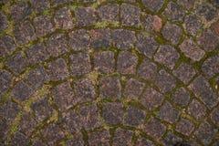Stary chodniczek w Petersburg teksturze zdjęcie royalty free