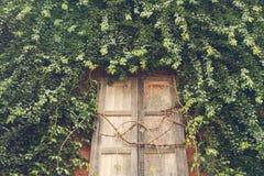 stary ściana okien Zdjęcie Royalty Free