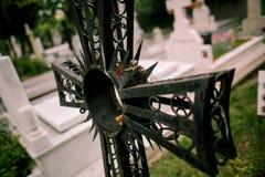stary cmentarz Zdjęcia Stock