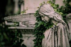stary cmentarz Zdjęcie Stock