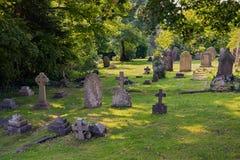 stary cmentarz Obraz Royalty Free