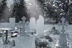 Stary cmentarz przerastający z trawą obrazy royalty free