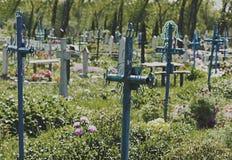 Stary cmentarz przerastający z trawą obrazy stock