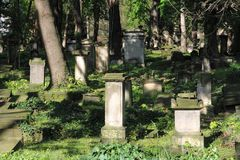 Stary cmentarz w Drezde?skim zdjęcia royalty free