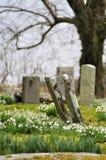 Przechylający gravestones w wiośnie Fotografia Royalty Free