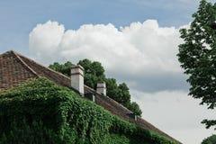 Stary dach, ściany przerastać z bluszczem fotografia royalty free