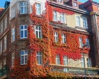 Stary dom, stary miasto Bratislava Fotografia Royalty Free