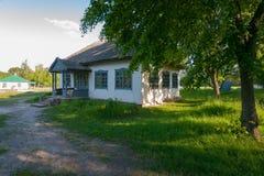 Stary dom na wsi z błękitnymi okno, zakrywającymi z płocha dachem pod gęstą zieloną lipowego drzewa koroną zdjęcia royalty free
