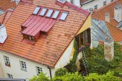 Stary dom przerastający winnica, Praga obrazy royalty free