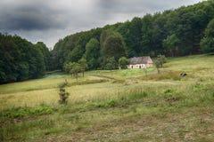 Stary dom w lesie - PÃ ¡ nsky dom Obrazy Stock