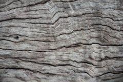 Stary drewniany abstractbackground w Thailand Zdjęcie Stock
