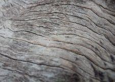 Stary drewniany abstractbackground w Thailand Zdjęcie Royalty Free