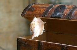 Stary drewniany bagażnik Obraz Stock