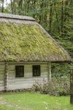 Stary drewniany dom, biały z pokrywającym strzechą dachem zakrywającym z mech ja Obraz Stock