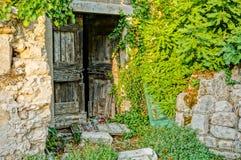 Stary drewniany drzwi przerastający figi drzewem Zdjęcie Stock