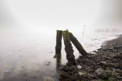 Stary drewniany groyne na linii brzegowej z ciężką zwartą mgłą Fotografia Royalty Free