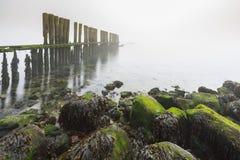 Stary drewniany groyne na linii brzegowej z ciężką zwartą mgłą Obrazy Royalty Free