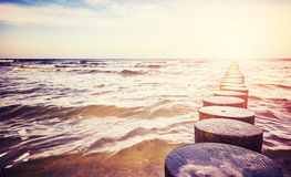 Stary drewniany groyne na plaży Zdjęcie Stock