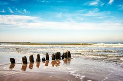 Stary drewniany groyne na plaży Obrazy Royalty Free
