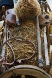 Stary drewniany handcart pełno słomiani i rolniczy narzędzia fotografia royalty free