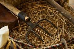 Stary drewniany handcart pełno słomiani i rolniczy narzędzia zdjęcie royalty free