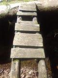 Stary drewniany jaskrawy Zdjęcia Stock