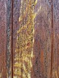 Stary drewniany malujący ochronny farby brąz obliczał deskę z przepływami drewniany złocisty żywica Szczegół drewniane deski Zdjęcie Royalty Free