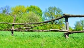 Stary drewniany ogrodzenie na tle zielona trawa obraz royalty free