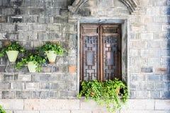 stary drewniany okno i kwiatu garnek Fotografia Stock