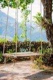 Stary drewniany rocznika ogródu huśtawki obwieszenie od wielkiego drzewa i mo Obraz Royalty Free