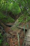 Stary drewniany schody Obrazy Royalty Free