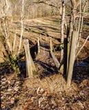 Stary Drewniany stopa most przy obwieszenie skały stanu parkiem fotografia royalty free