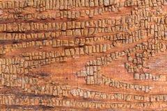 Stary drewniany tło z resztkami kawałki świstki stara farba na drewnie Tekstura stary drzewo, deska z farbą Zdjęcia Royalty Free