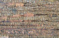 Stary drewniany tło z resztkami kawałki świstki stara farba na drewnie Tekstura stary drzewo, deska z farbą, roczników półdupki Zdjęcie Royalty Free
