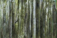 Stary drewniany tekstury tło, drewniana deska, wieśniaka ogrodzenie Fotografia Stock