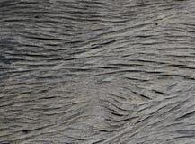 stary drewniany wzór, drewniany ścienny papier Zdjęcie Royalty Free
