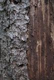 Stary drewno i barkentyna Zdjęcie Royalty Free