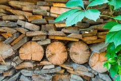 Stary drewno, przerastający z bluszczem tło textured obrazy stock