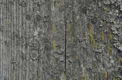 Stary drewno stołu tekstury tło streszczenie powierzchni Zamyka w górę ciemnego nieociosanego drewna robić stara drewno stołu tek obraz royalty free