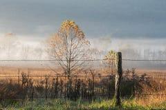 Stary Druciany ogrodzenie w Mgłowej dolinie zdjęcia stock