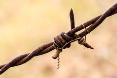 Stary drut kolczasty Obrazy Stock