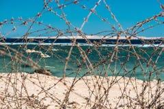 Stary drut kolczasty przed morzem Drut i niebieskie niebo z chmurami Zbawczy ogrodzenie drut kolczasty przeciw morzu i niebieskie Obrazy Royalty Free